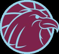 Arnhem Eagles logo
