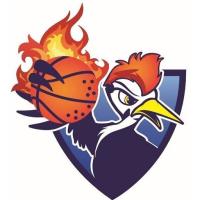 Woodpeckers logo