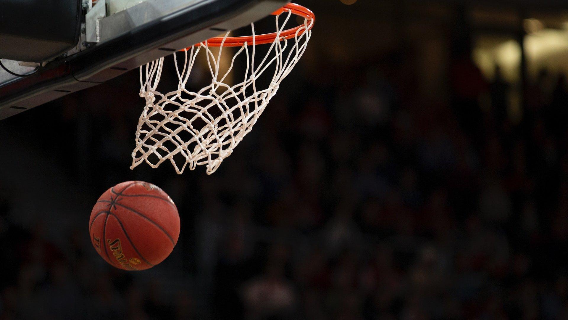 Basketball Lions.jpg