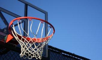 Nederlandse basketball bond.jpg